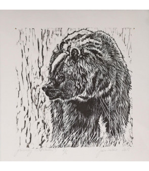 xylogravure ours - grizzly serie attitudes - Julie Salmon